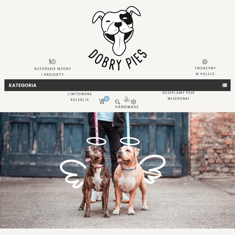 Designerskie smycze i obroże dla psa.